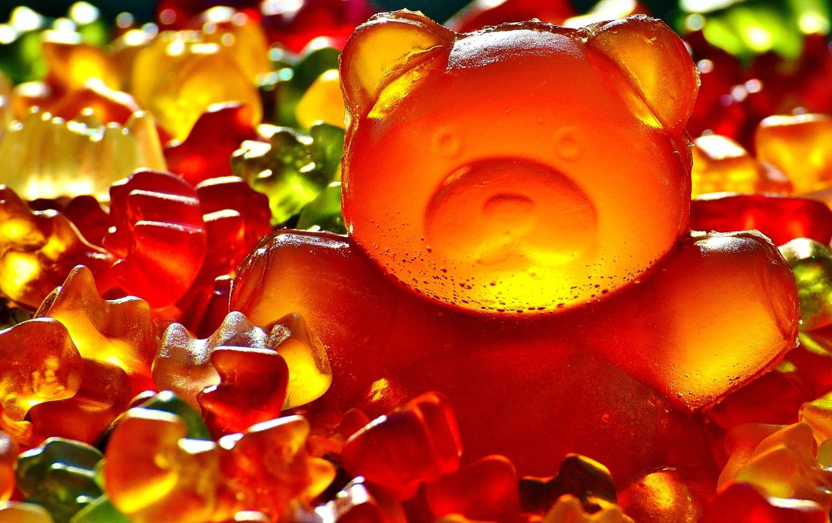 wet li hing mui gummy bears