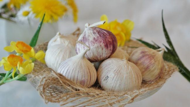how to neutralize garlic smell